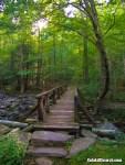 Footbridge over stream