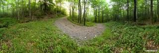 Spruceton Trail Switchback (360)