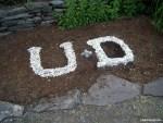 U & D